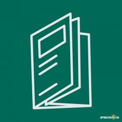 Double parallel folds leaflet