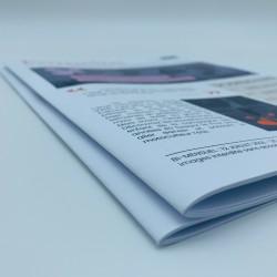 Tabloid newspaper
