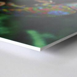 Forex blanc 2mm